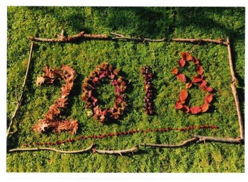 2018 - Thomas Davies 7D.jpg