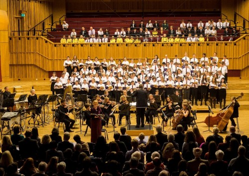 TD The Concert 140.jpg